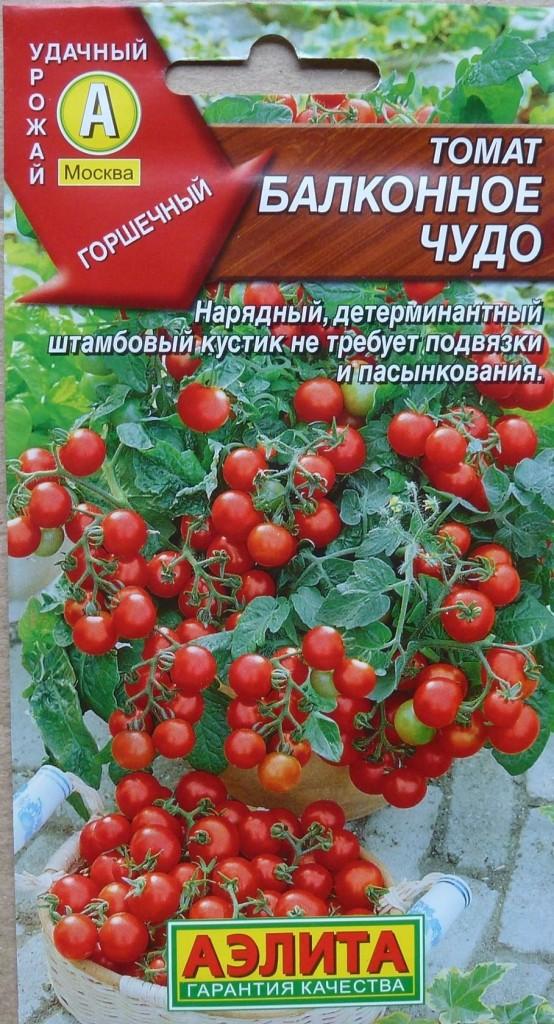 томаты балконное чудо отзывы описание характеристика
