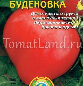 помидоры буденовка фото выращивание в открытом грунте