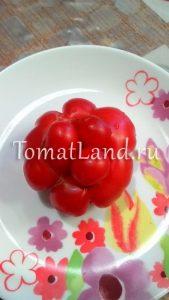 томат чесновый рейстомат отзывы