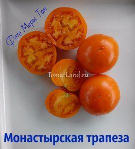помидоры монастырская трапеза отзывы