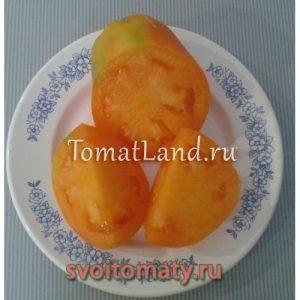 томаты Золотая ладья фото