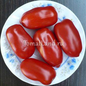 томаты Сан Марцано отзывы