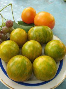 помидоры сибирский малахит