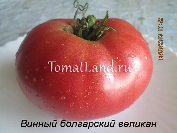винный болгарский великан фото отзывы
