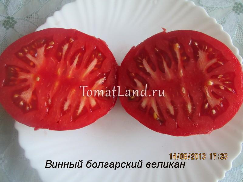 помидоры винный болгарский великан отзывы