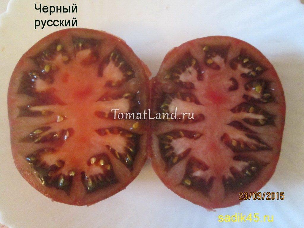 помидор черный русский в разрезе