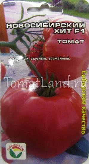 помидоры новосибирский хит фото