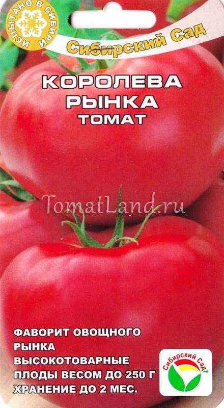 помидоры королева рынка фото