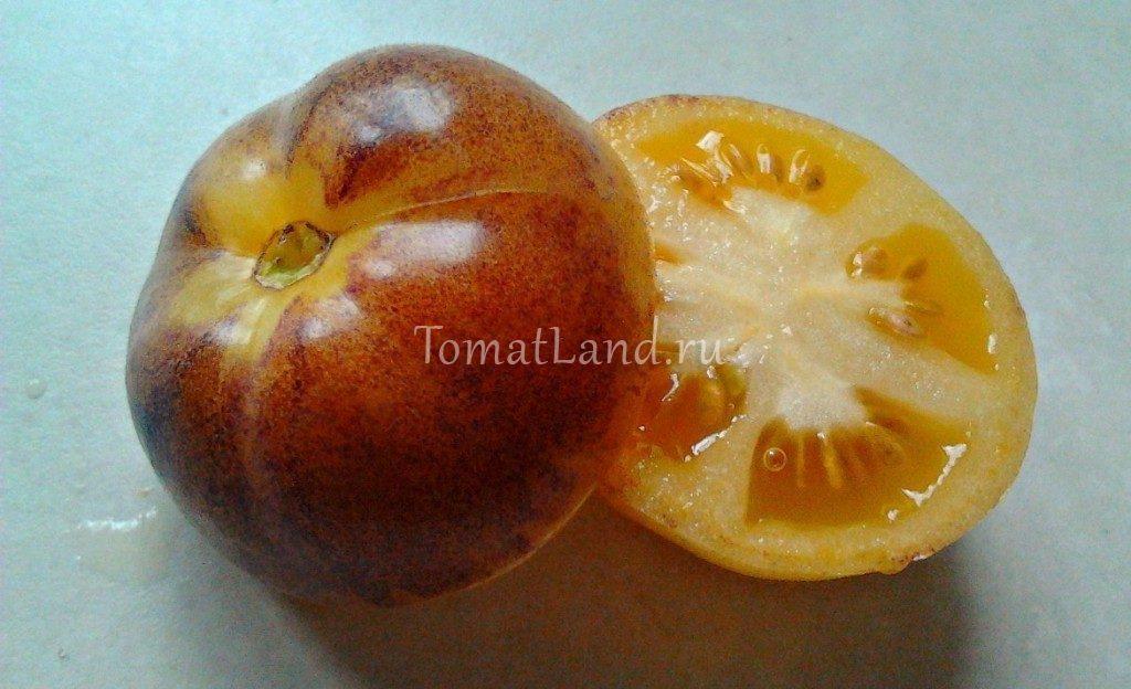 помидоры основные цвета фото