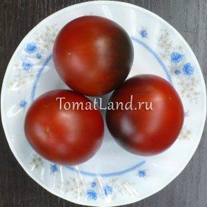томаты сорт Синий шоколад отзывы
