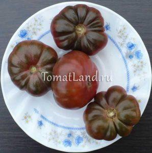 помидоры тим черный ребристый
