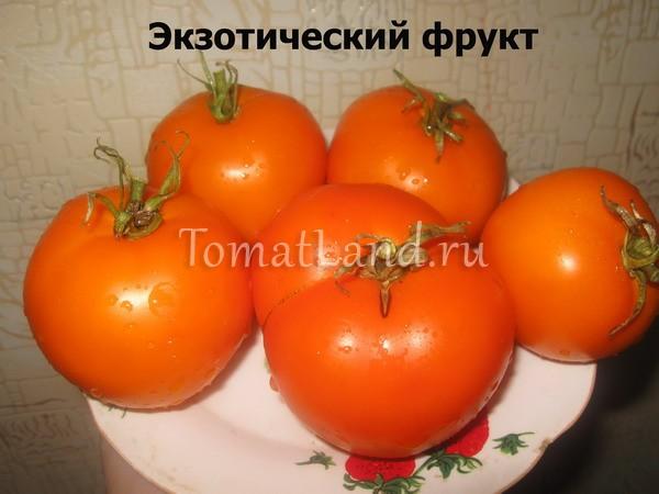сорт Экзотический фрукт фото