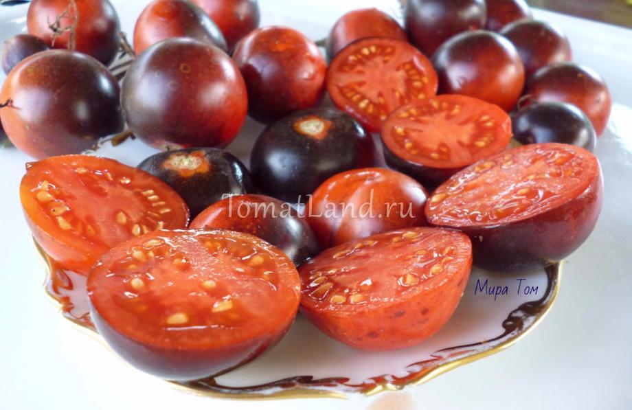 томаты голубая старица спелые фото