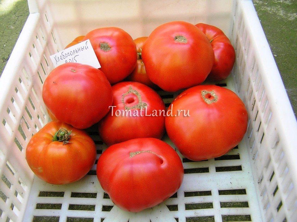 томаты Хлебосольные фото спелых плодов