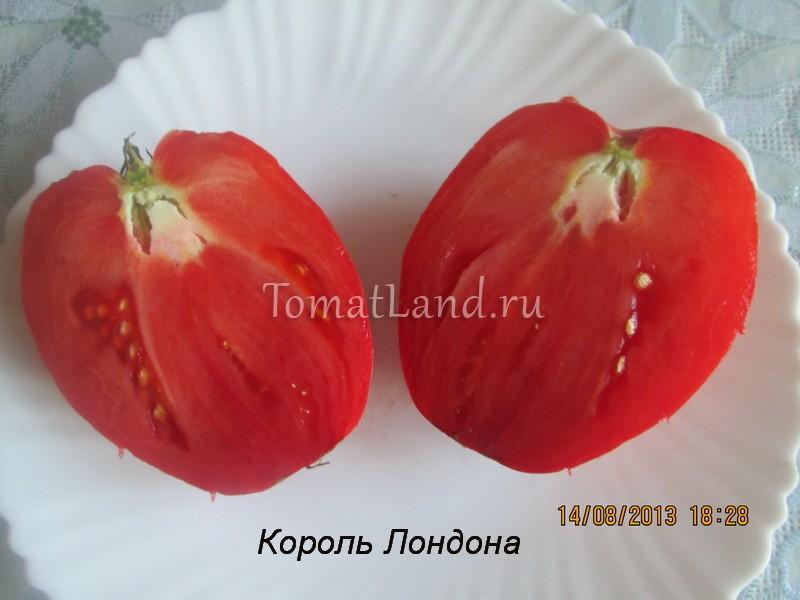 томат король лондона фото спелых плодов