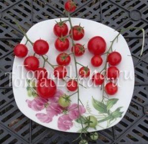 помидоры черри валентинка