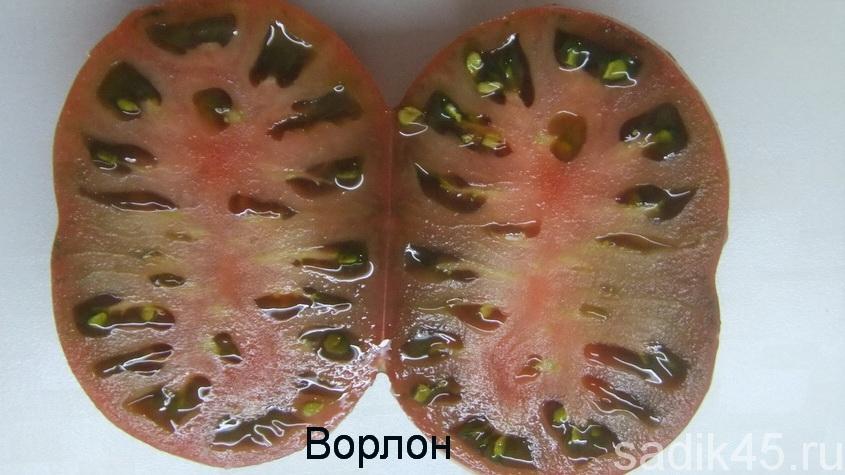 томаты ворлон фото в разрезе