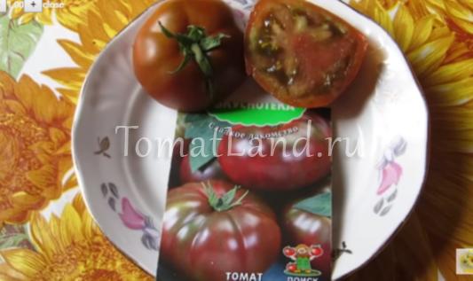 помидоры зефир в шоколаде фото отзывы