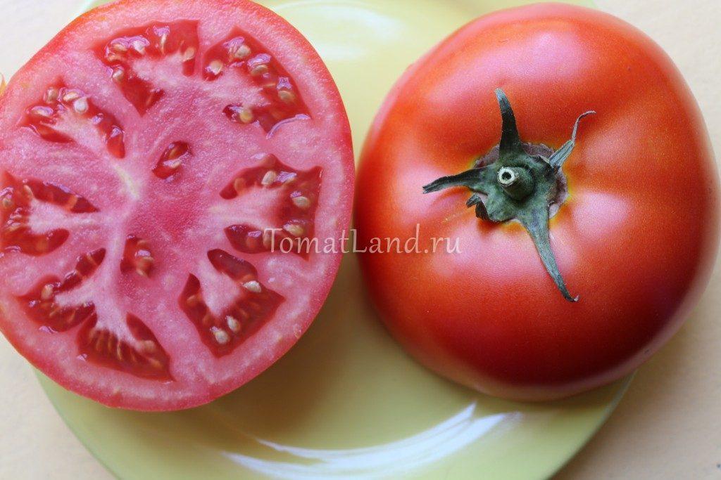 томаты помидоры киржач фото в разрезе отзывы