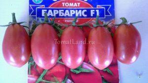 помидоры барбарис f1