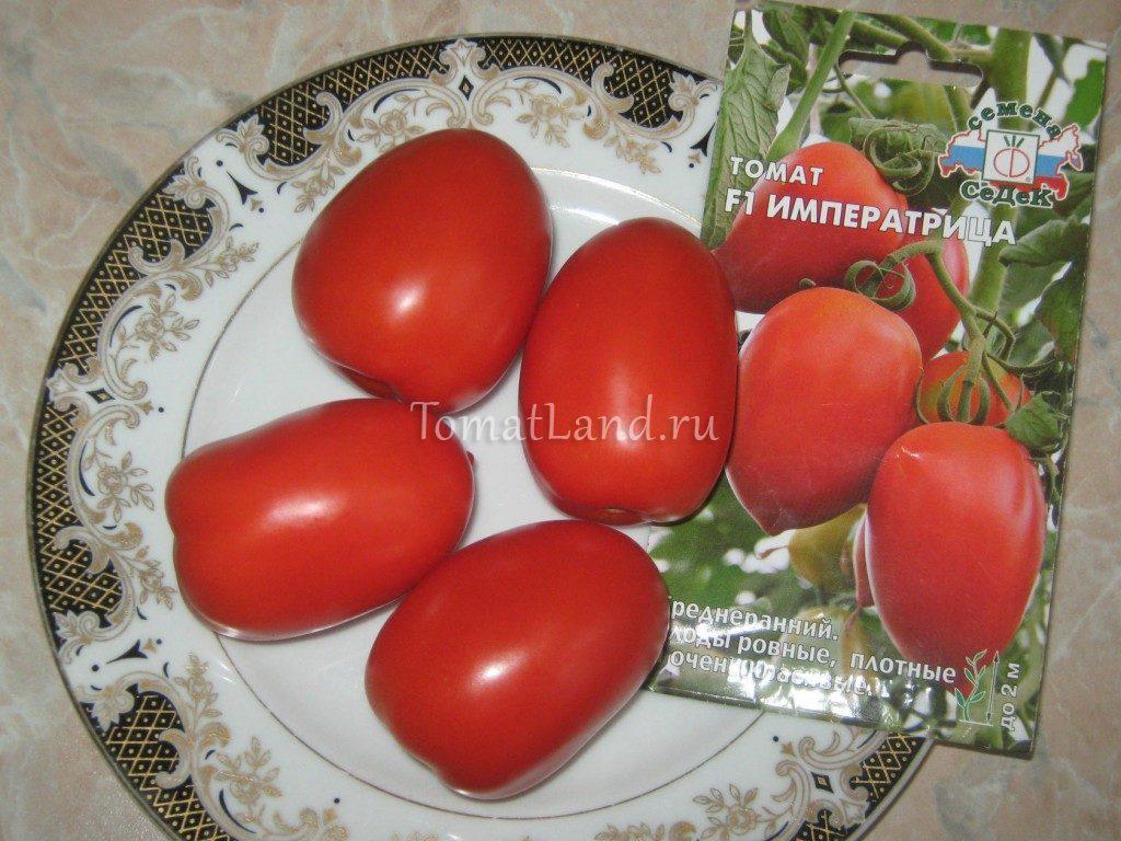 помидоры императрица фото спелых плодов