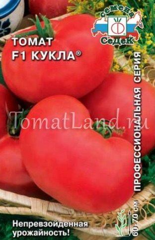 помидоры кукла фото
