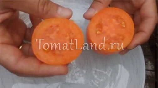 томаты золотое руно в разрезе фото отзывы