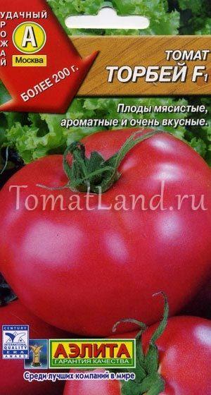 помидоры Торбей отзывы фото