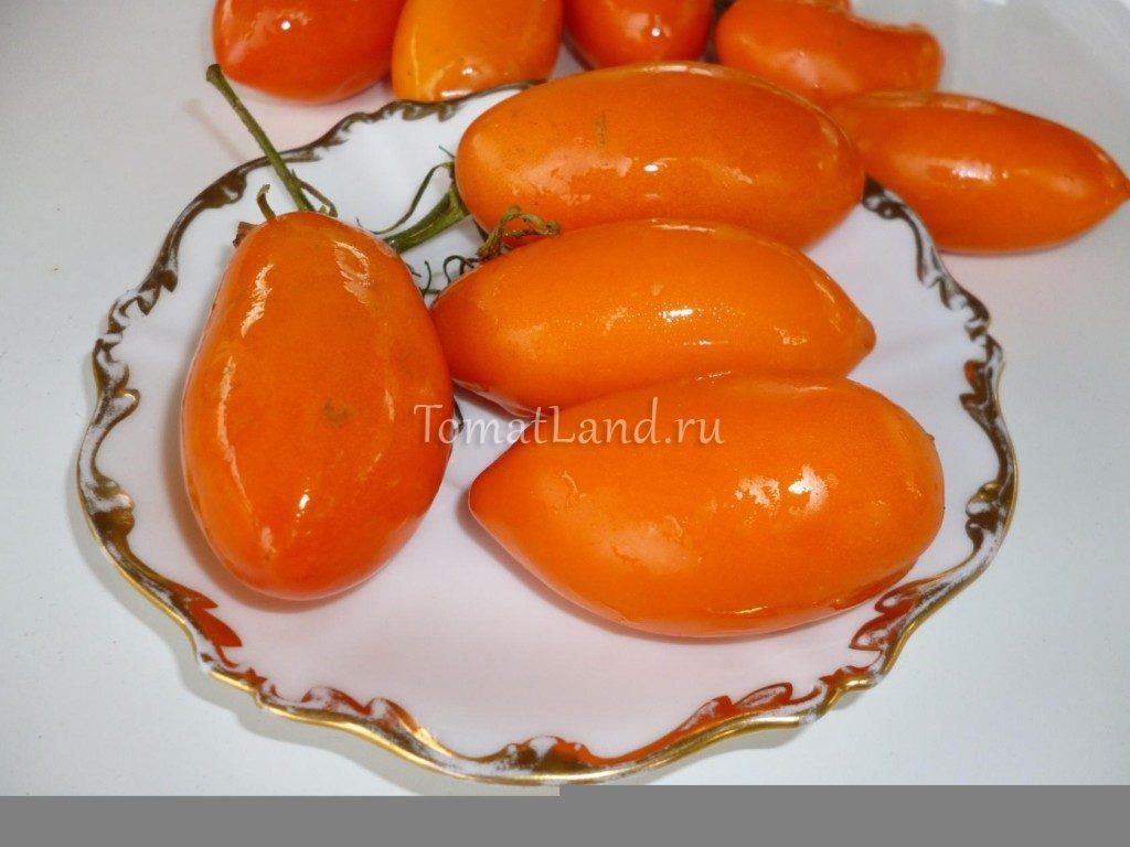 помидоры золотое руно фото