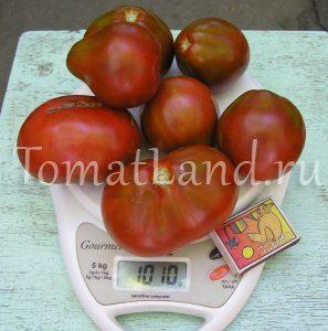 томат Трюфель черный