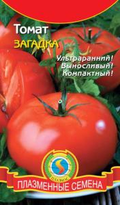 помидоры сорт загадка выращивание в открытом грунте
