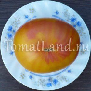 томаты Армянские