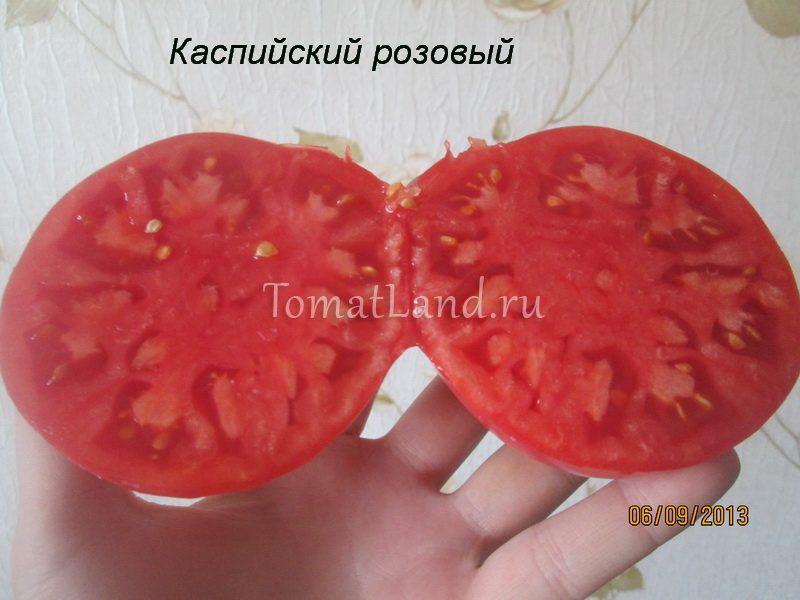 помидоры каспийский розовый фото