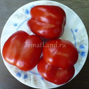 томат Мещанская начинка