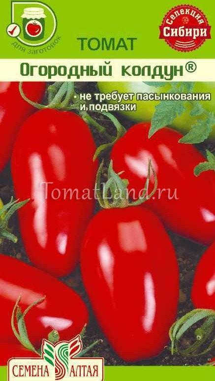 помидоры огородный колдун фото