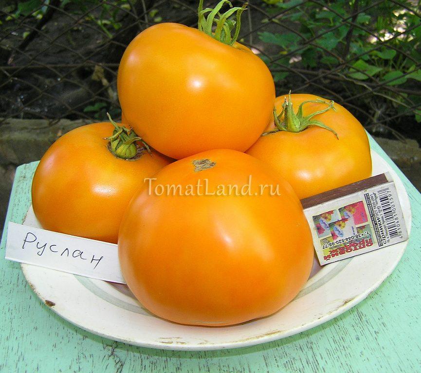 помидоры руслан фото спелых плодов