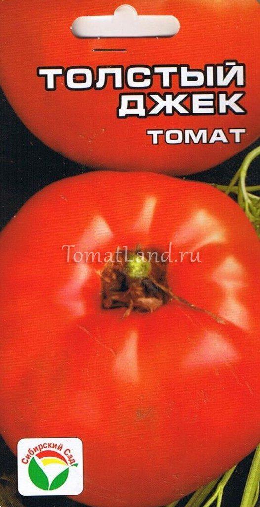 помидоры толстый джек фото спелых плодов