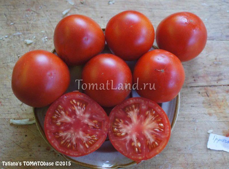 помидоры грунтовой сараева фото спелых плодов