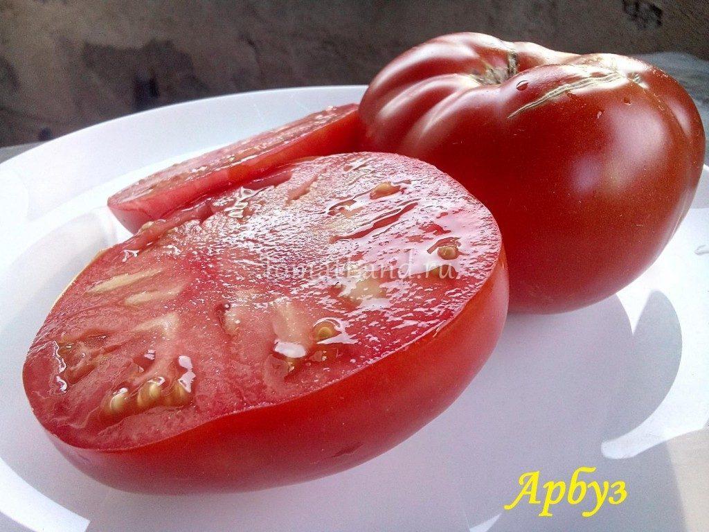 томаты арбуз фото характеристика
