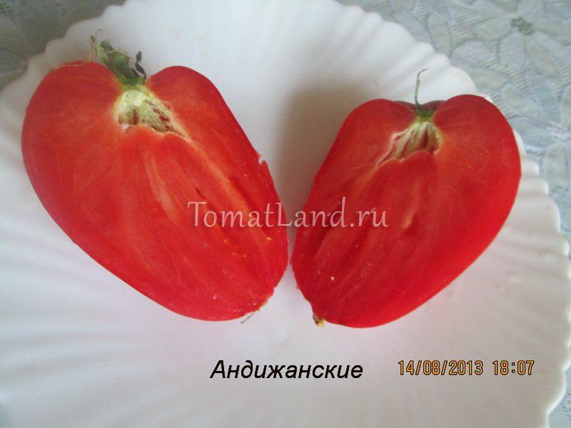 томат андижанские фото в разрезе
