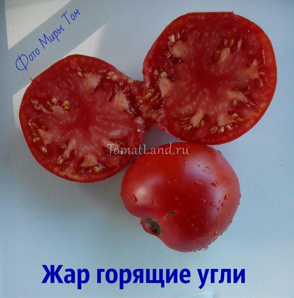 томат жар горящие угли