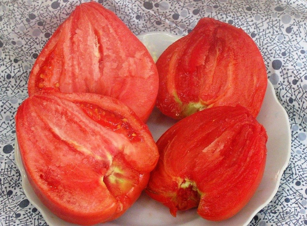 помидоры сорт коловый кубанский фото