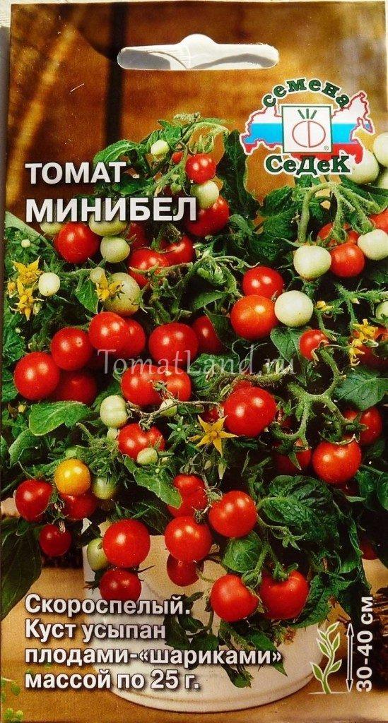 томат минибел отзывы фото