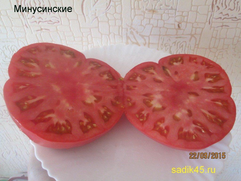 томаты минусинские фото в разрезе