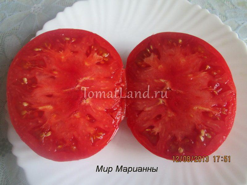 томат мир марианны в разрезе