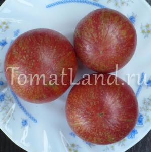 томат блауверк
