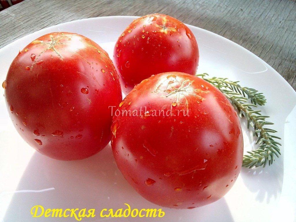 томаты детская сладость фото отзывы