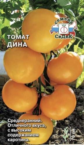 помидоры дина фото