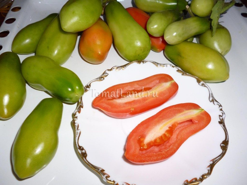 томат итальянские спагетти фото