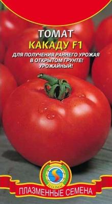 томаты какаду отзывы фото урожайность